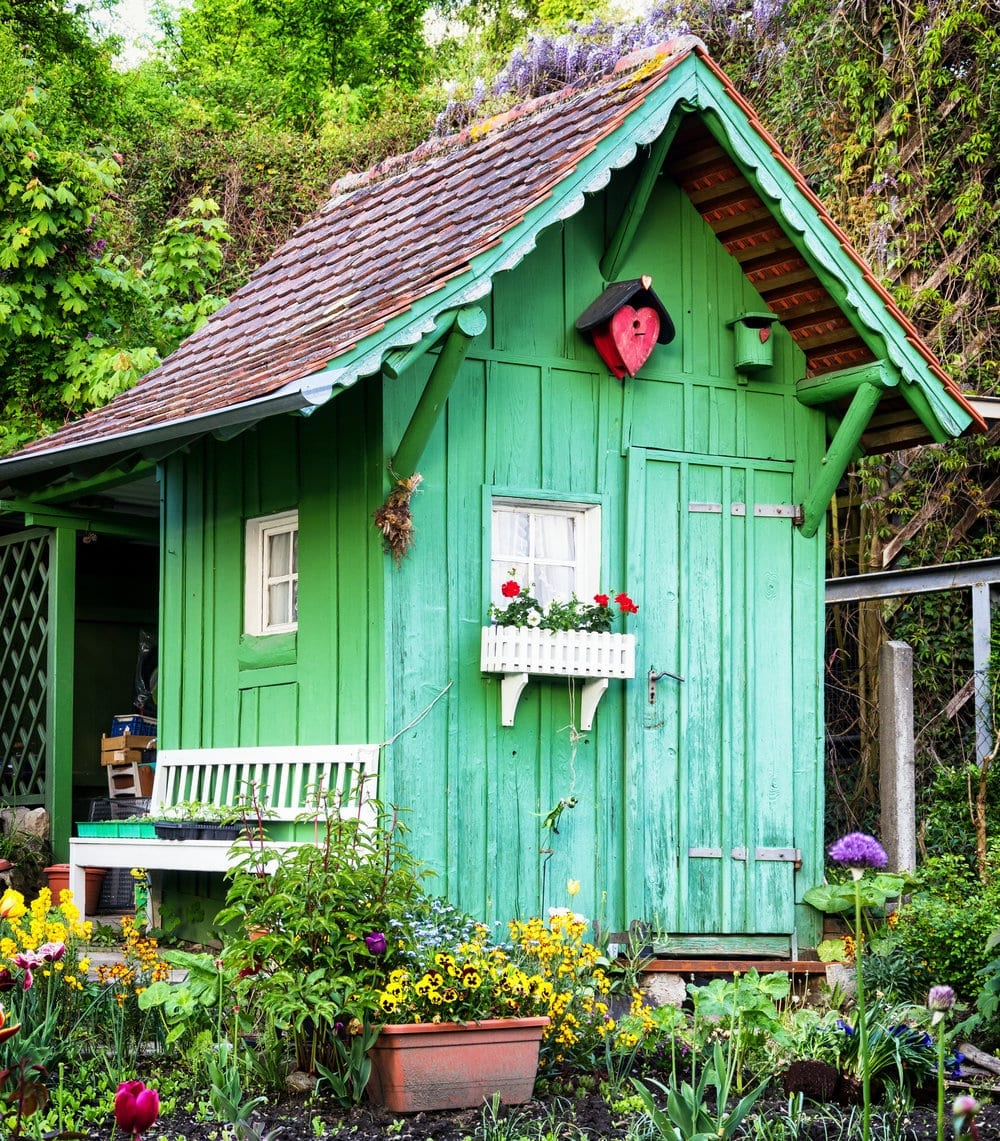 She Shed (Cumberland Buildings)