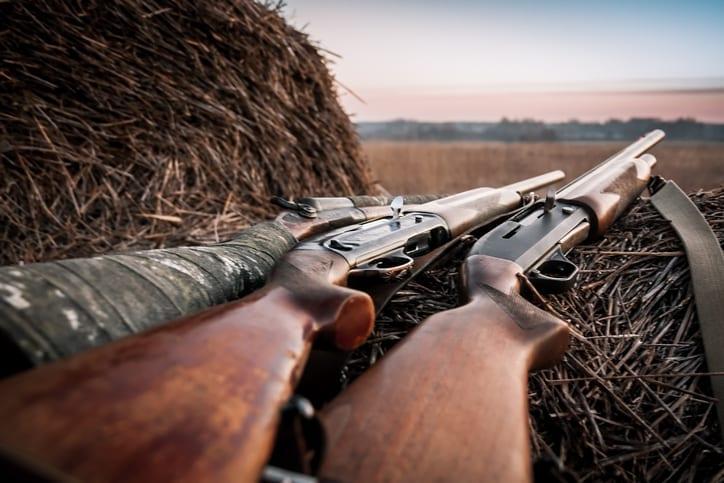 Shotguns for Hunting